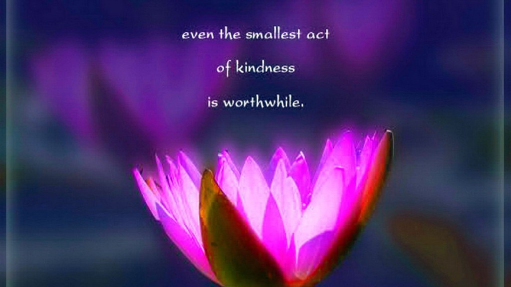 smallest kindness