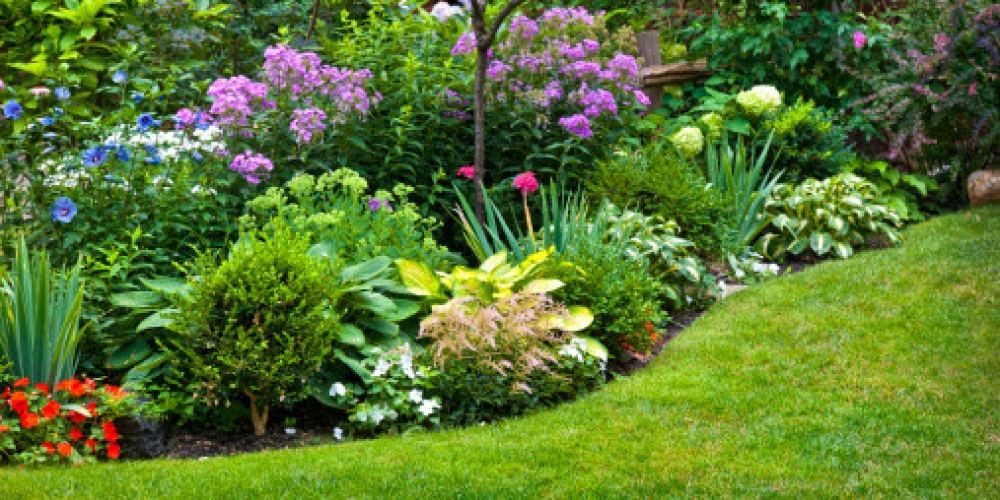 Flower-Beds-and-Your-Yard