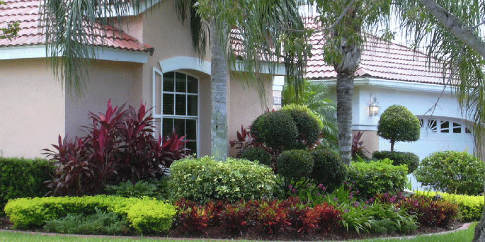 Ideas-for-Front-Yard-Landscaping-With-Palm-Trees