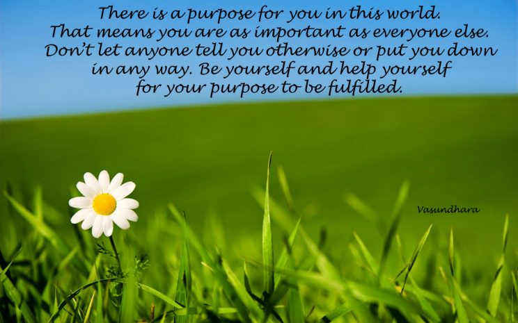 There is a Purpose