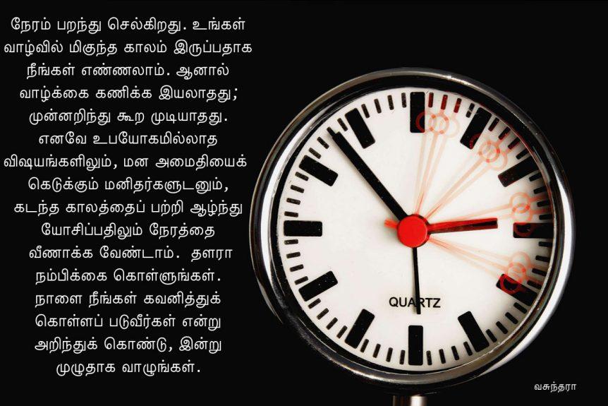 Time Flies t